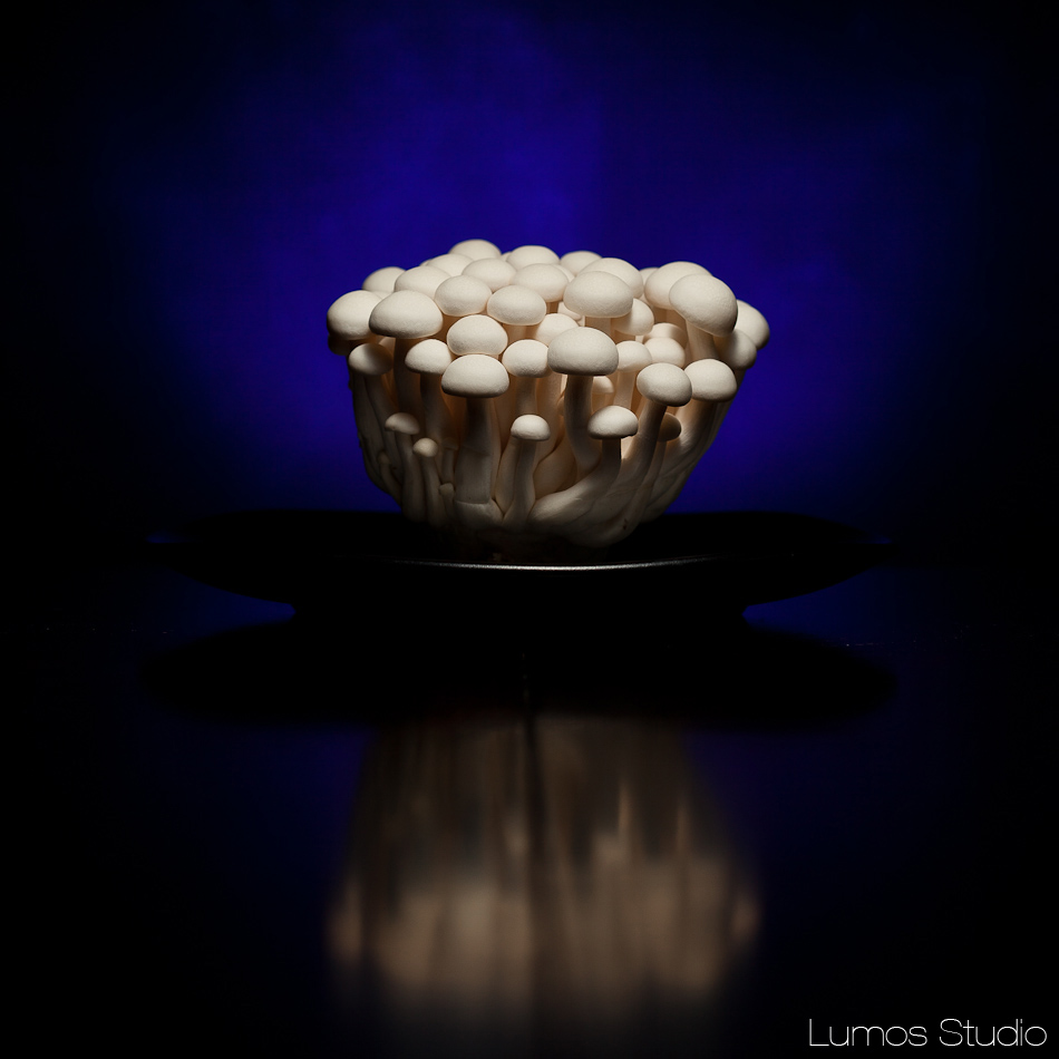 Strobist mushrooms