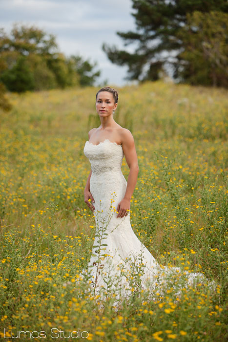 Gorgeous bride in a field of flowers in Columbia, SC